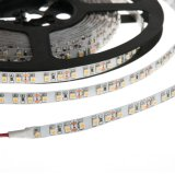 32.8FT 10M Single Color LED Strip Tape Light, 600 SMD 3528 LEDs, 12V DC, 48 Watts, IP33 Nonwaterproof (2x5M/Reel)